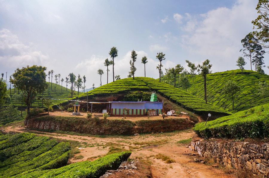 Munnar temple