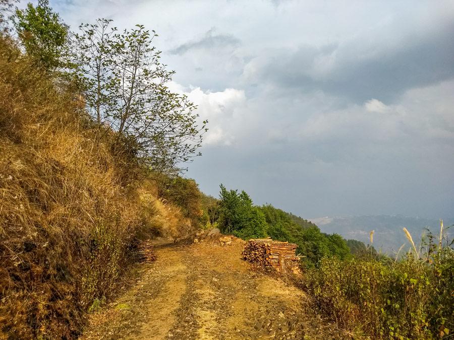 Dzukou Valley rain