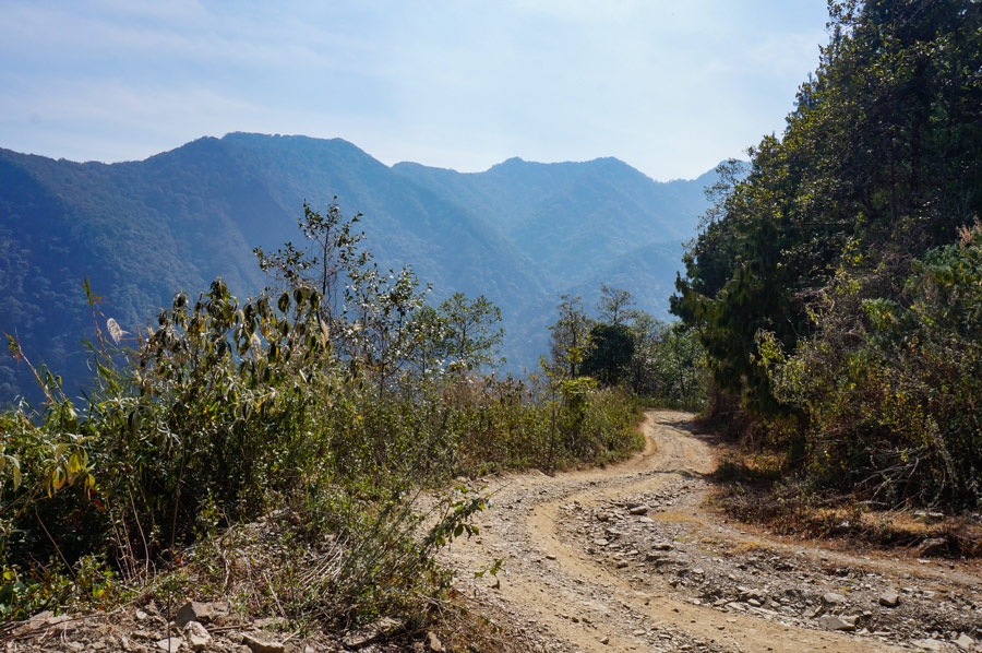 Viswema to Dzukou Valley road