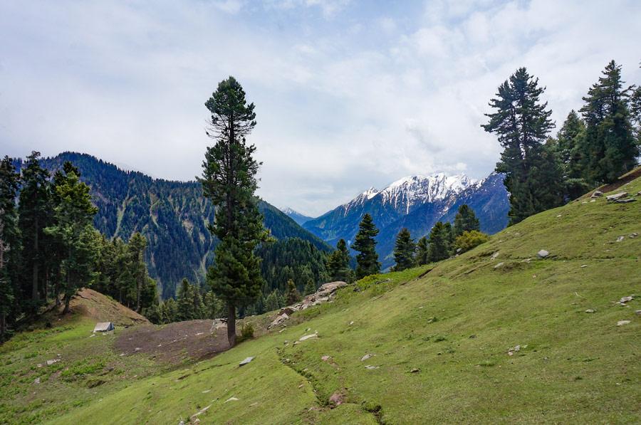 Aru Valley trek