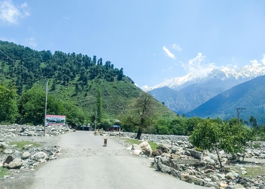 Pahalgam to Srinagar