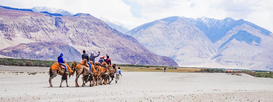Nubra Valley Himalaya