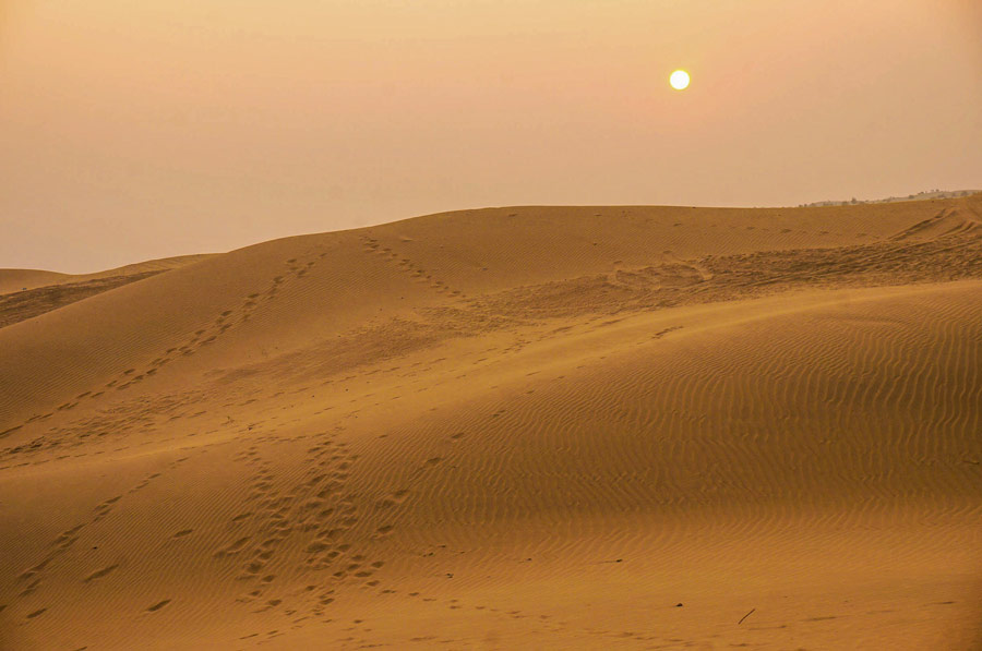 Sunset in Thar Desert