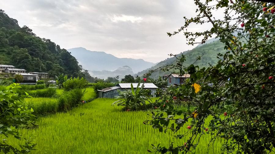 Ghermu, Nepal