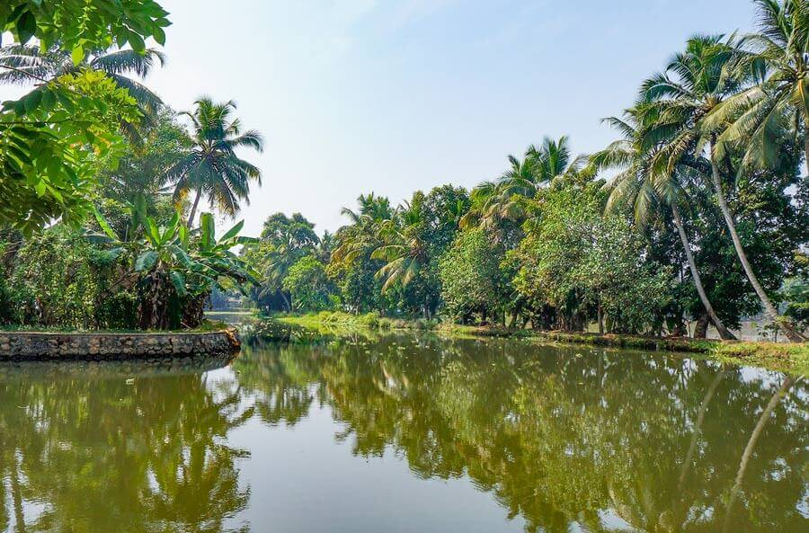 Kerala backwater canal