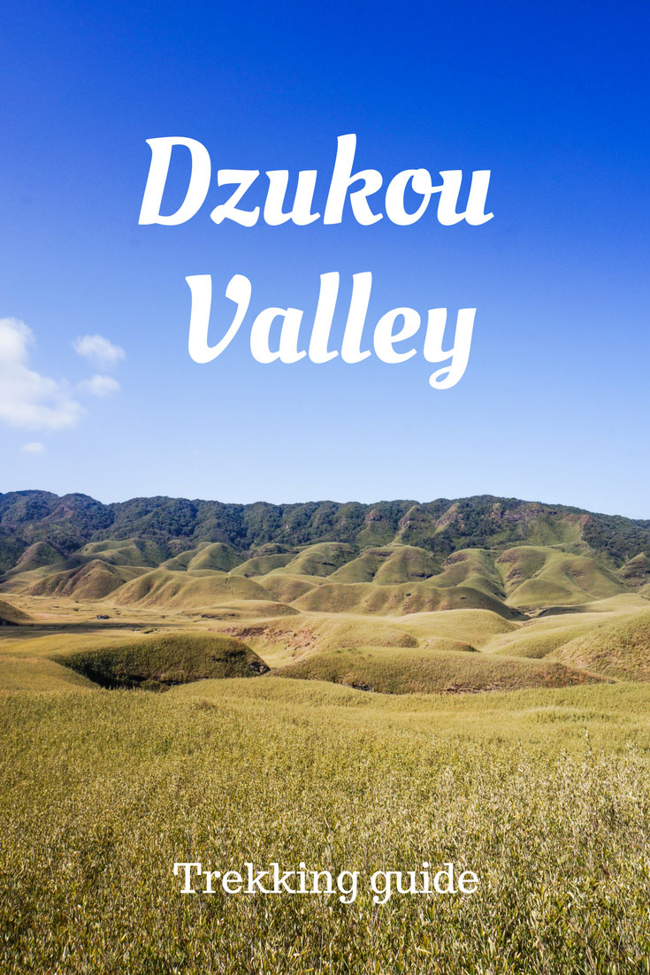Dzukou valley trek guide