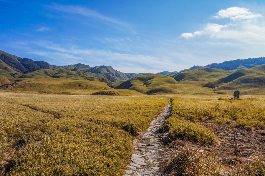Dzukou Valley trails