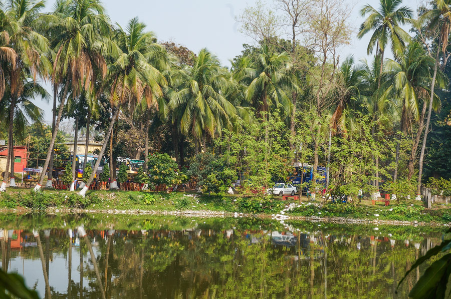 Natore Palace pond