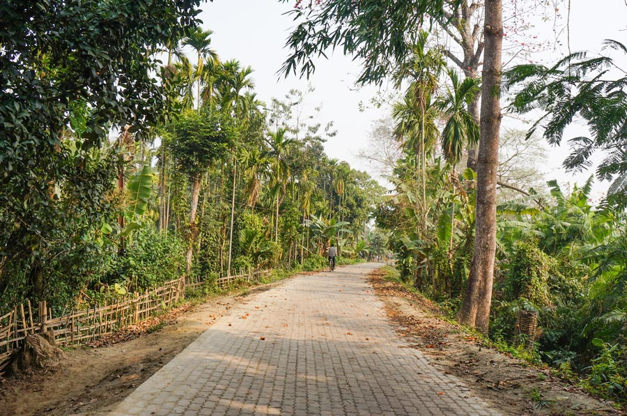Majuli road and a man on a bicycle